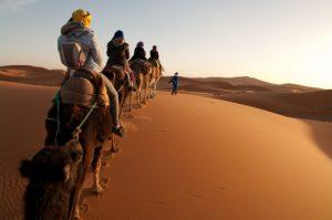 Il deserto dei Berberi Zingaro di Macondo