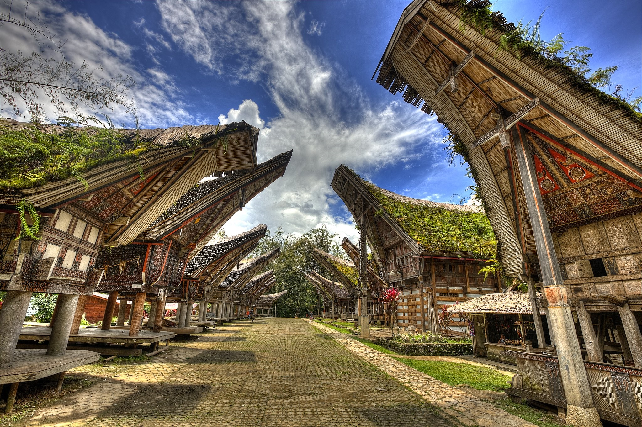 Case Toraja Zingaro di Macondo